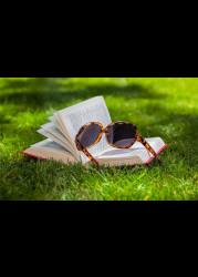 ТОП-10 книг за июнь 2019